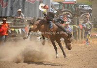 View the latest Rodeo Event images